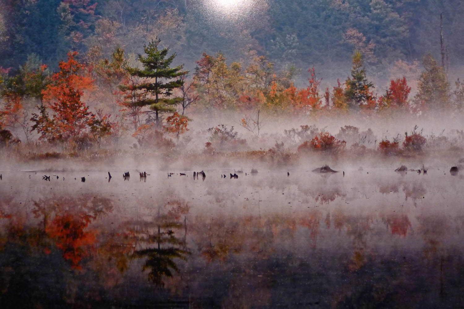 A lake in the Catskills by Hank Gans
