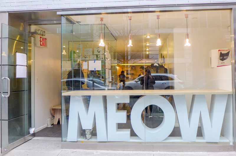 Meow Parlor